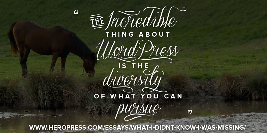Banner: The incredible thing about WordPress is the diversity of what you can pursue.