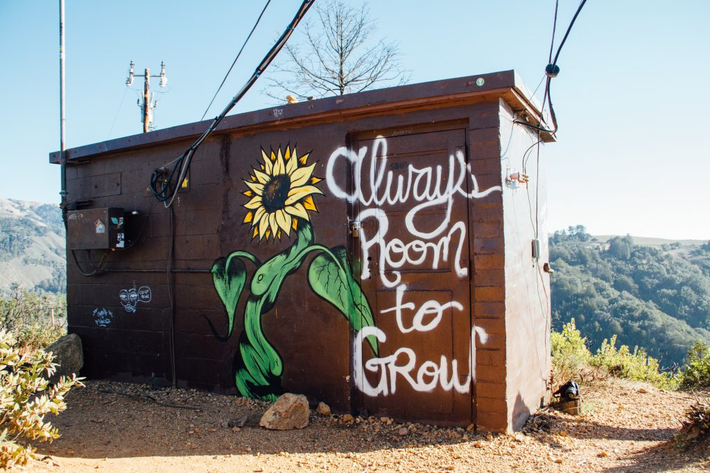 "Shed with a sunflower painted on the side. Text reads, ""Always room to grow."""